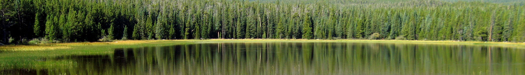 Reflection in Bierstadt Lake