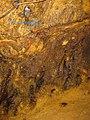 Rosia Montana Roman Gold Mines 2011 - Wall Detail-1.jpg