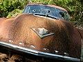 Rusty-car florida-detail-15 hg.jpg