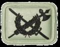 SANDF Insignia Internal Audit Practioner badge embossed.png