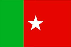 SDPI Flag.jpg