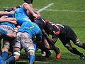 ST vs Treviso 2013 (46).JPG
