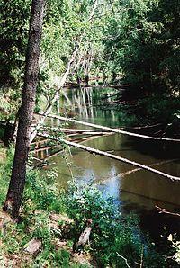 Saijanjoki.jpg