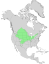 Salix amygdaloides range map 0.png