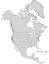 Salix exigua hindsiana range map 0.png
