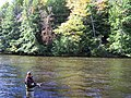 Salmon River fishing for trout - panoramio.jpg