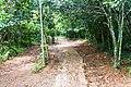 Samaná Province, Dominican Republic - panoramio (139).jpg