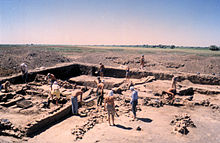 Photograph of people in shirtsleeves working amidst the excavated foundations of ancient buildings