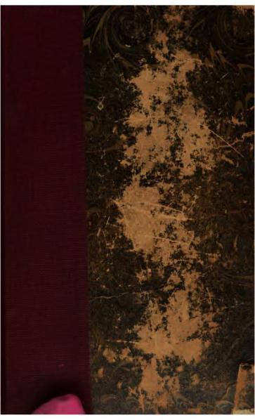 File:Sand - Consuelo - 1856 - tome 1.djvu