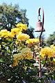 Santa Clara, CA USA - Santa Clara University, Mission Santa Clara de Asis - panoramio (27).jpg