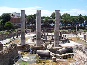 "Bradyseism - The ""Serapium"" or Macellum of Pozzuoli demonstrated the effects of bradyseism."