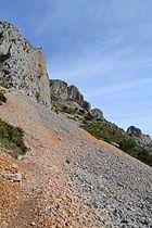 Serra de Bèrnia, tartera al vessant sud.JPG