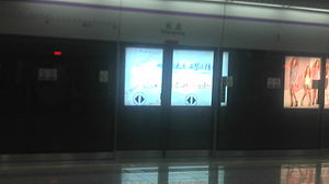Shenzhen Metro Changlong Station.jpg