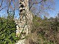 Side Belediyesi, Side-Manavgat-Antalya, Turkey - panoramio (4).jpg