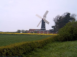East Riding of Yorkshire - Skidby Windmill is surrounded by fertile agricultural land typical of the East Riding.
