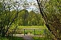 Skulyn Kovelskyi Volynska-Nechymne nature reserve-sightseeing place near the lake.jpg