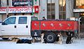 Sled-dog truck in Anchorage.jpg