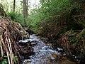 Small stream in the Taunus 2.jpg