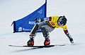 Snowboard LG FIS World Cup Moscow 2012 004.jpg
