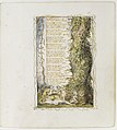 Songs of Innocence and of Experience- The Little Girl Found (second plate) MET DR388.jpg