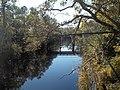 Sopchoppy River FL CR 22 bridge south02.jpg