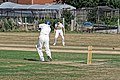 Southwater CC v. Chichester Priory Park CC at Southwater, West Sussex, England 003.jpg