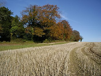 To Autumn - Harvested field, Hampshire