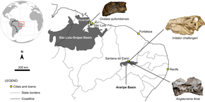 Map of the Northeast Region of Brazil, with the marked fossil discovery sites of Oxalaia, Irritator, and Angaturama
