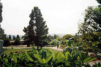 Ramot Menashe - View from the dining hall