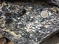 Spitzer Granodioritgneis sl5.jpg