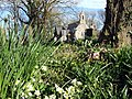 Springtime at Granston - geograph.org.uk - 395620.jpg