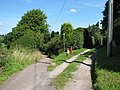 St Briavels - footpath to Slade Bottom - geograph.org.uk - 520163.jpg