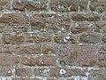 St Mary's Church, Petworth Road, Chiddingfold (May 2014) (Stonework).JPG