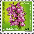 Stamps of Romania, 2007-020.jpg