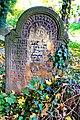 Stary cmentarz żydowski w Cieszynie14.JPG