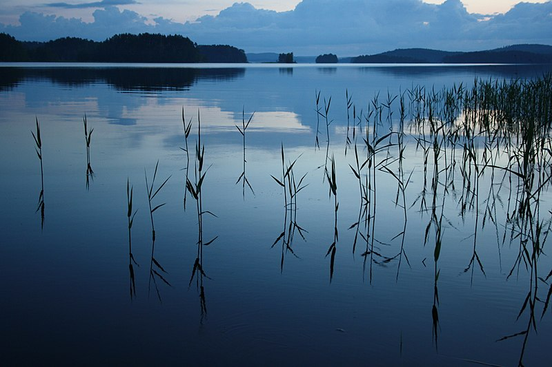 File:Still Water At Dusk.jpg