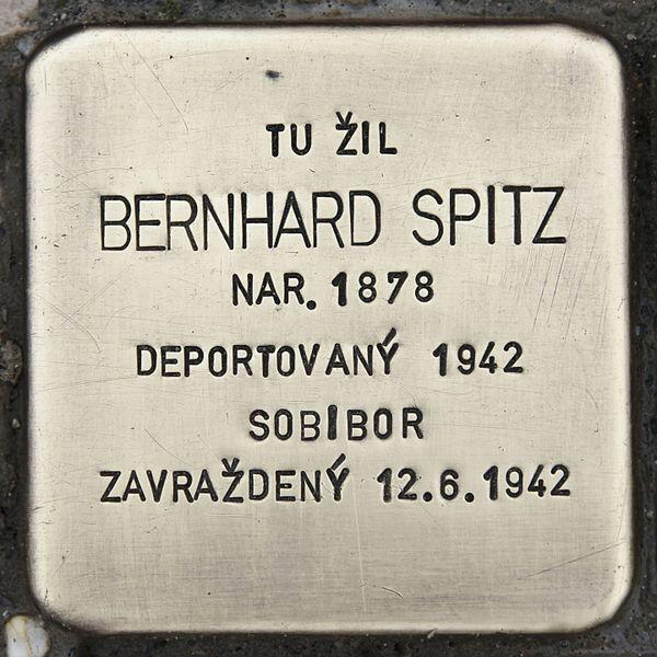 File:Stolperstein für Bernhard Spitz.JPG