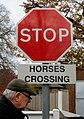 Stop! (8203925472).jpg