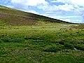 Strath Carnaig - geograph.org.uk - 207801.jpg