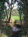 Stream north of Hough Bridge - geograph.org.uk - 329134.jpg