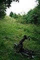 Stripped Down Bike - geograph.org.uk - 889291.jpg