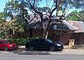 Subaru Liberty GT (2).jpg
