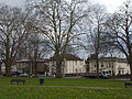 Sutton, Surrey - Greater London - Sutton Green bare trees.jpg
