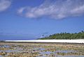 Takutea AKK Reef Flats.jpg