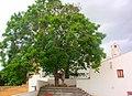 Tavira (Portugal) (12219223893).jpg