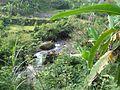 Tawangmangu 2009 Bennylin 089.jpg