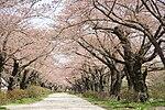 Tenshochi Park.jpg
