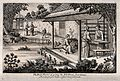 Textiles; silk manufacture in China, feeding the silkworms. Wellcome V0024218.jpg