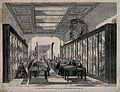 The British Museum; the Botanical Room, with visitors. Wood Wellcome V0013524.jpg