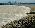 The Edge of the Humber - geograph.org.uk - 1483737.jpg